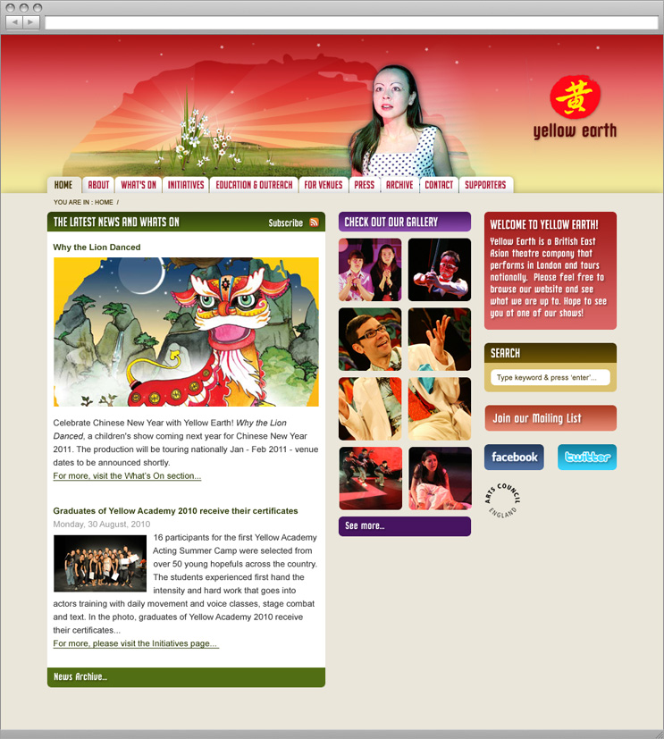 Yellow Earth website design