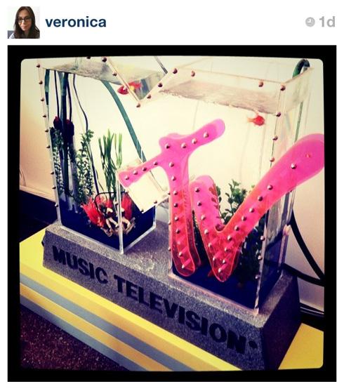 MTV Fish Tank