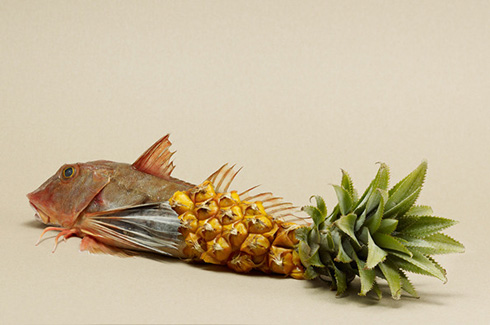 Fish Pineapple