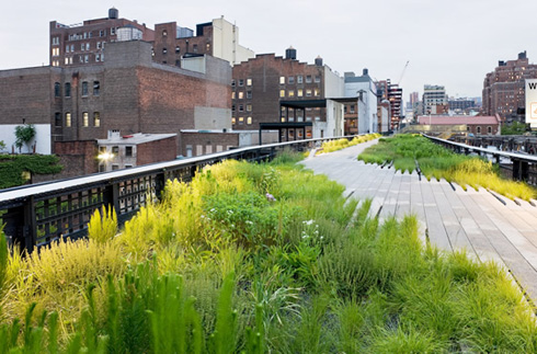 NYC's High Line - The Park in the Sky