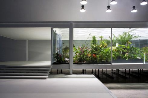 Macro Butterfly House
