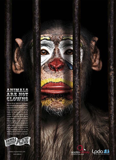 Powerful Animal Campaigns